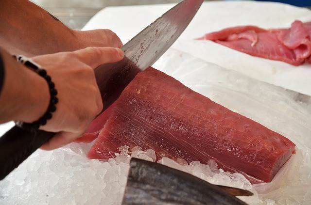 A Closer Look At Tuna: How Much Protein in Tuna Fish