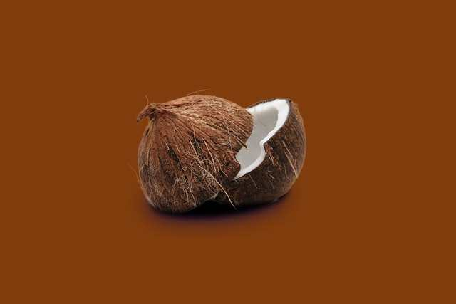 Is coconut a fruit or vegetable?